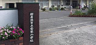 愛媛県新居浜市 市立金栄小学校バックネット基礎塗装ボランティア